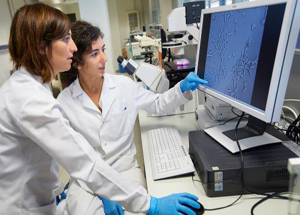 红外光谱技术在食品检测中的应用