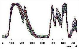 批红芪FT-IR指纹紅外光譜图谱