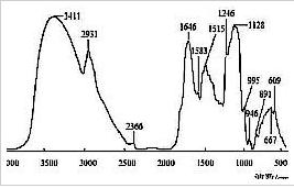 红芪FT-IR平均光谱的特征吸收峰及其解析