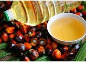 iCAN 9傅立叶紅外光譜儀在棕榈油中脂肪含量测定上的应用