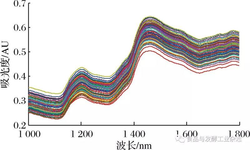 稻谷脂肪近红外光谱特征筛选及检测模型构建